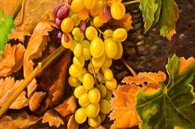 XLI Noche del Vino en Cómpeta